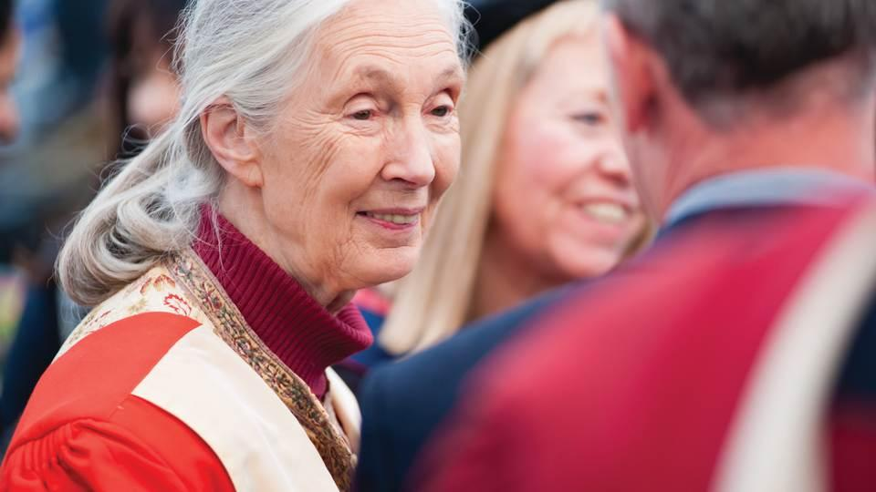 Photo of Dame Jane Goodall